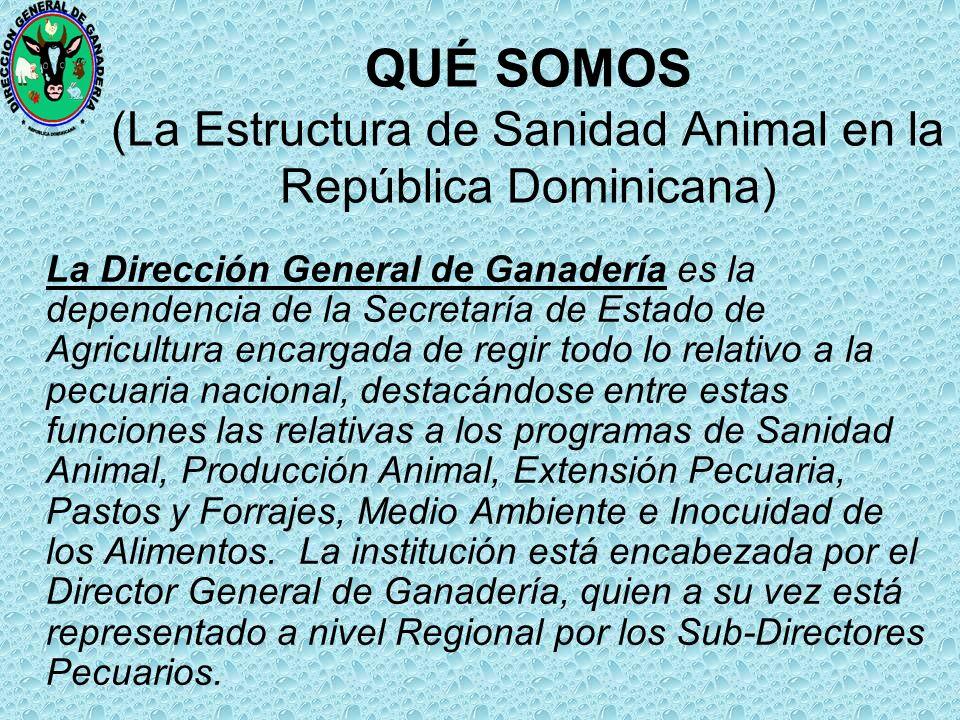 QUÉ SOMOS (La Estructura de Sanidad Animal en la República Dominicana)