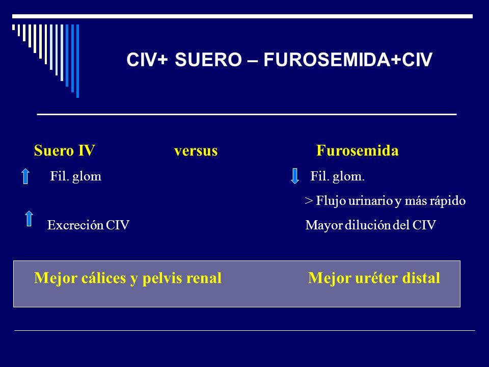 CIV+ SUERO – FUROSEMIDA+CIV
