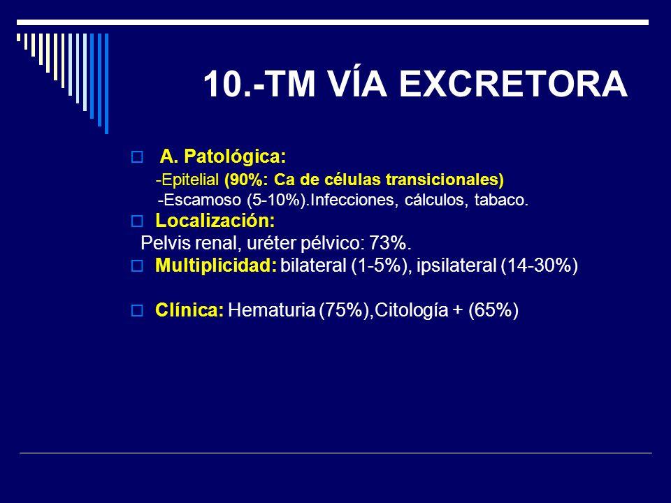 10.-TM VÍA EXCRETORA A. Patológica: