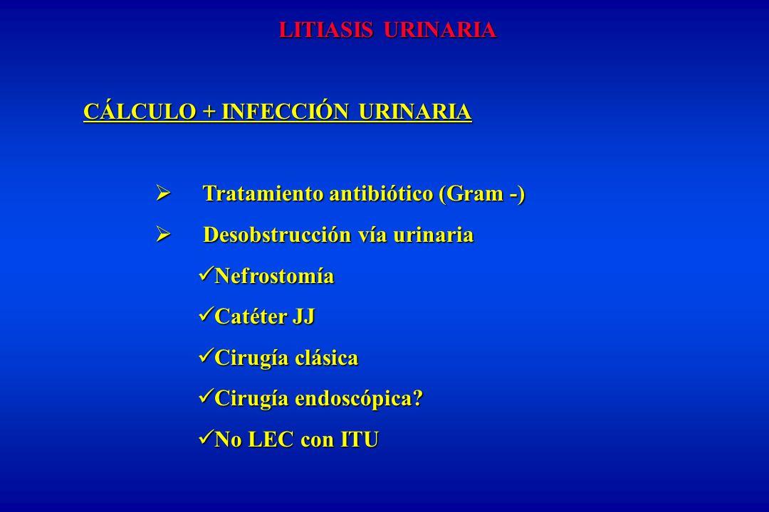 LITIASIS URINARIA CÁLCULO + INFECCIÓN URINARIA. Tratamiento antibiótico (Gram -) Desobstrucción vía urinaria.
