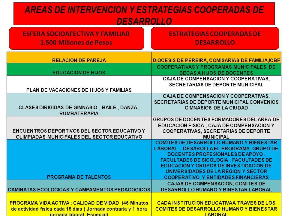 AREAS DE INTERVENCION Y ESTRATEGIAS COOPERADAS DE DESARROLLO