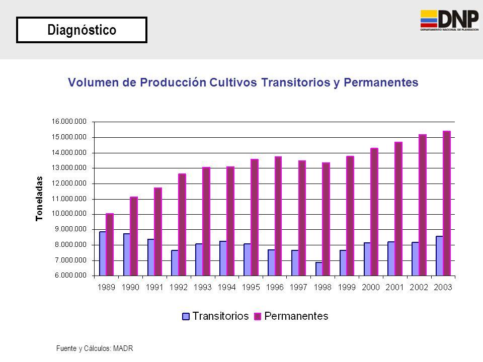 Volumen de Producción Cultivos Transitorios y Permanentes