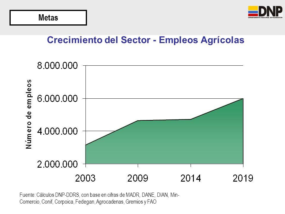 Crecimiento del Sector - Empleos Agrícolas