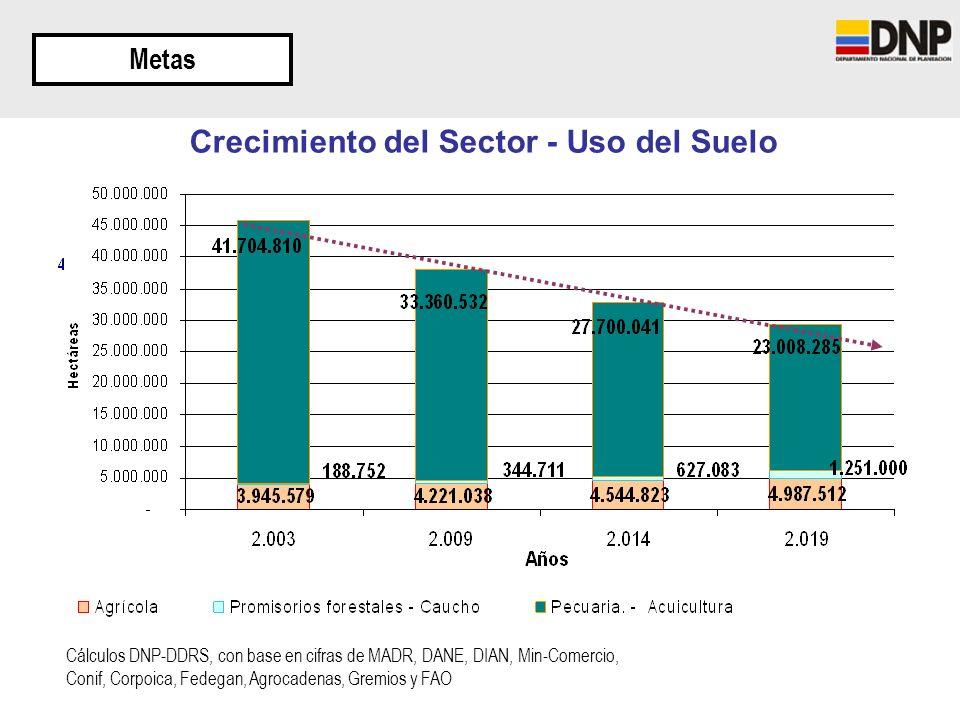 Crecimiento del Sector - Uso del Suelo