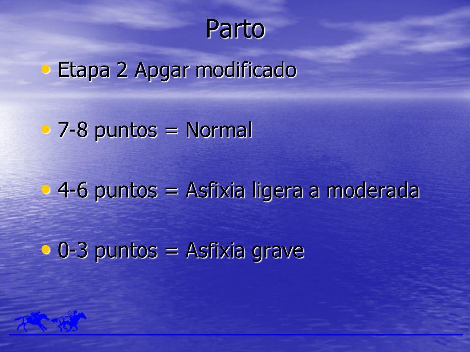 Parto Etapa 2 Apgar modificado 7-8 puntos = Normal