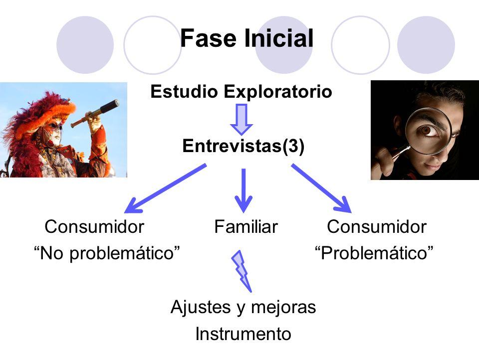 Fase Inicial Estudio Exploratorio Entrevistas(3)