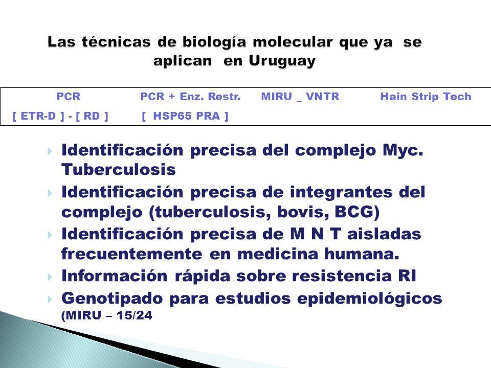 Las técnicas de biología molecular que ya se aplican en Uruguay