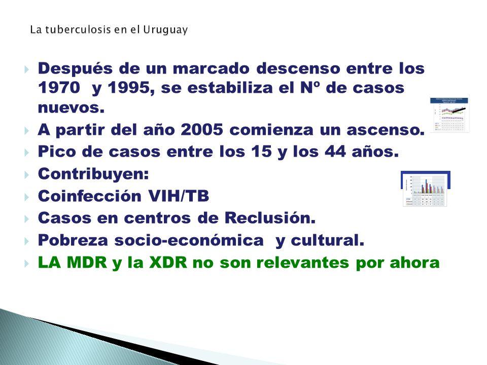 La tuberculosis en el Uruguay