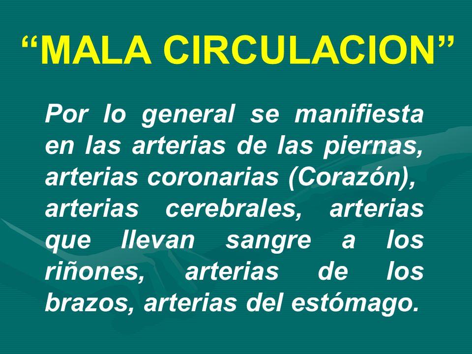 MALA CIRCULACION Por lo general se manifiesta en las arterias de las piernas, arterias coronarias (Corazón),