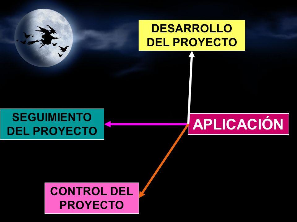 DESARROLLO DEL PROYECTO SEGUIMIENTO DEL PROYECTO