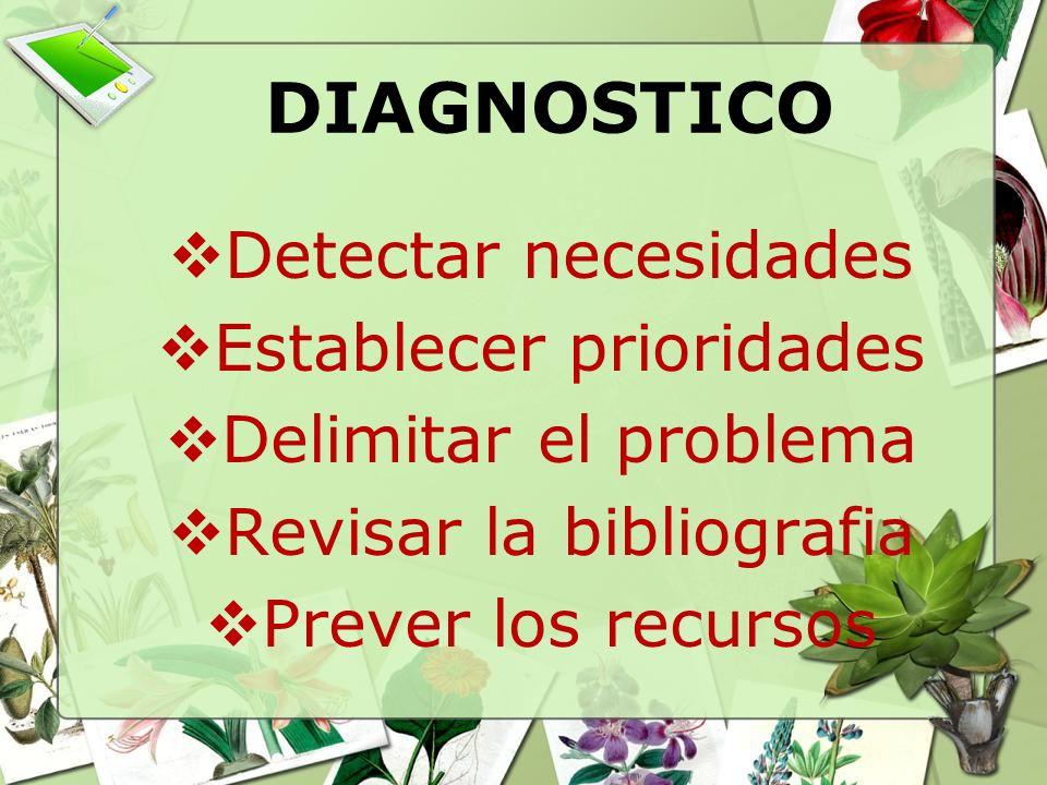 DIAGNOSTICO Detectar necesidades Establecer prioridades