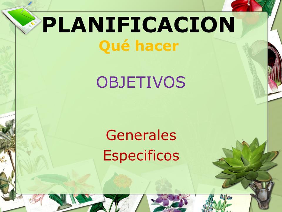 PLANIFICACION Qué hacer