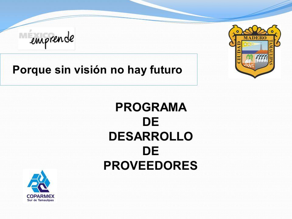 PROGRAMA DE DESARROLLO PROVEEDORES