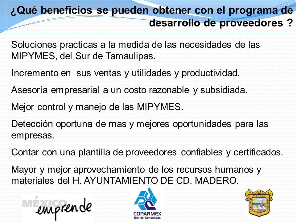 ¿Qué beneficios se pueden obtener con el programa de desarrollo de proveedores
