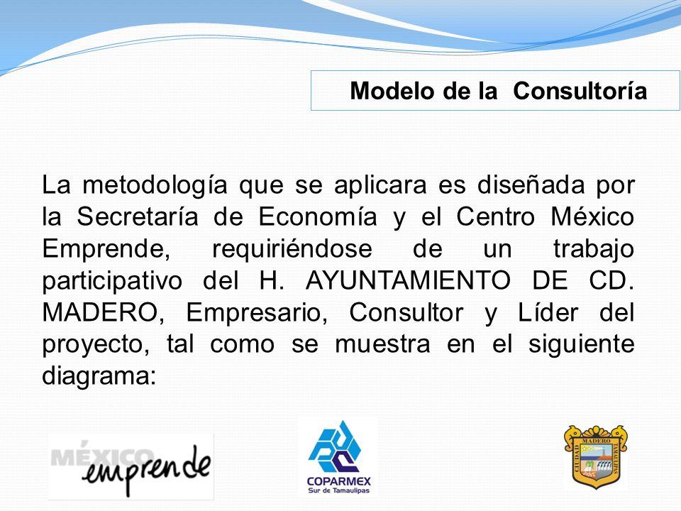Modelo de la Consultoría