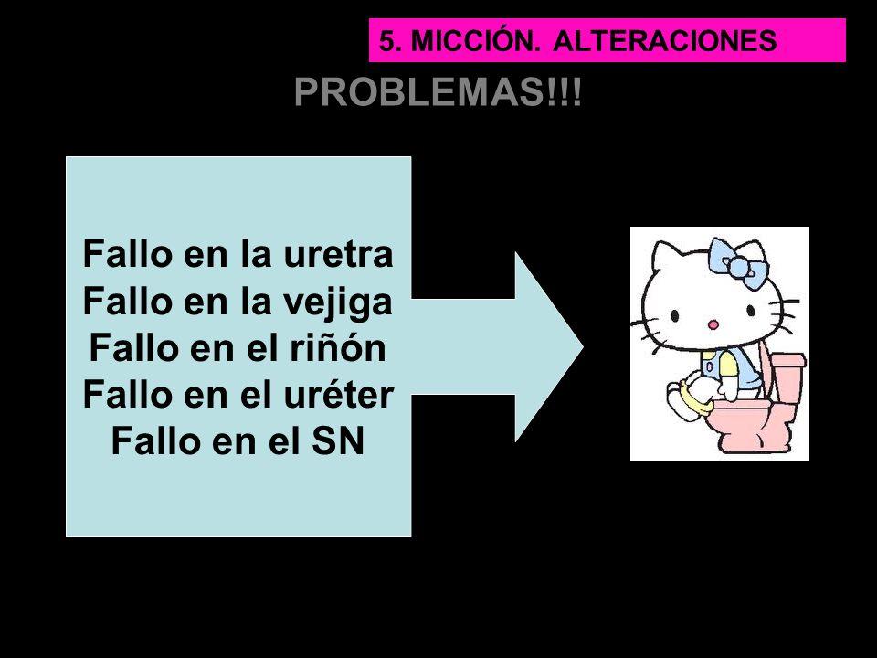 PROBLEMAS!!! Fallo en la uretra Fallo en la vejiga Fallo en el riñón