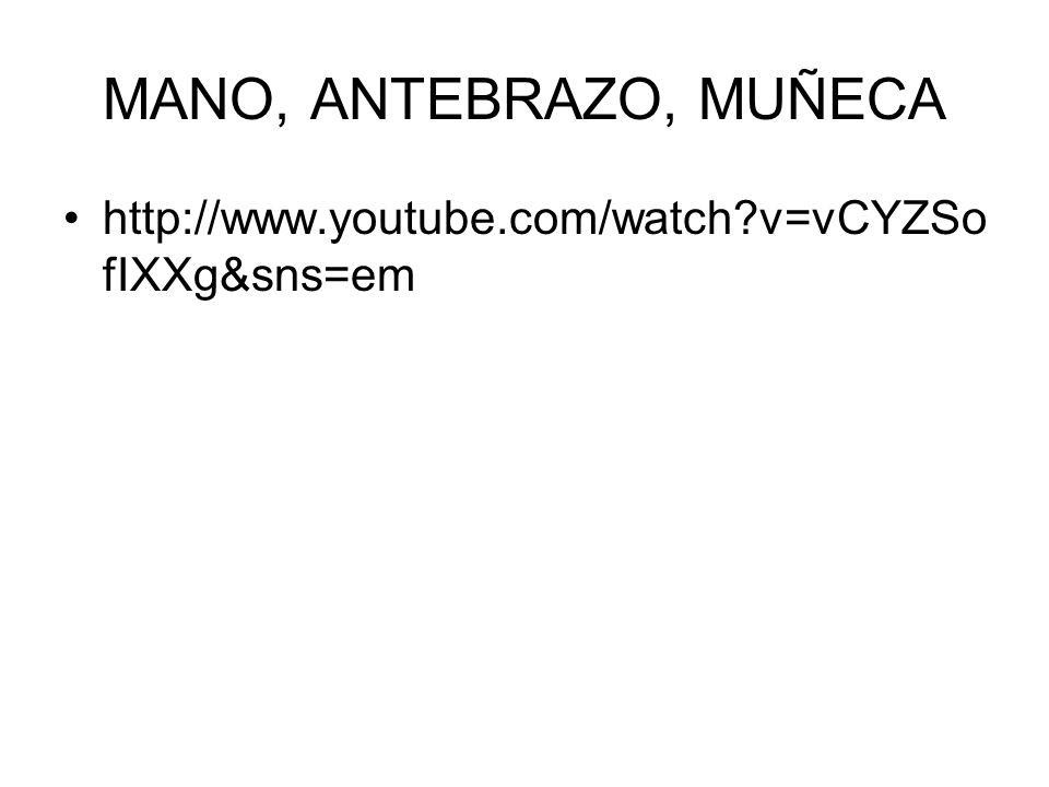 MANO, ANTEBRAZO, MUÑECA http://www.youtube.com/watch v=vCYZSofIXXg&sns=em 4 MINUTOS