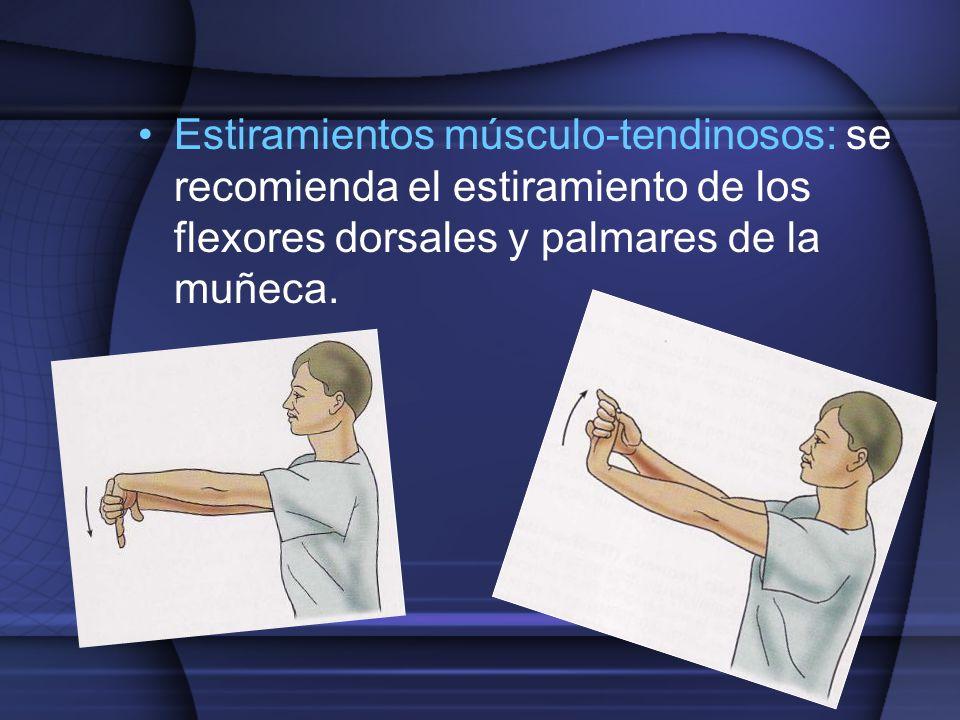 Estiramientos músculo-tendinosos: se recomienda el estiramiento de los flexores dorsales y palmares de la muñeca.