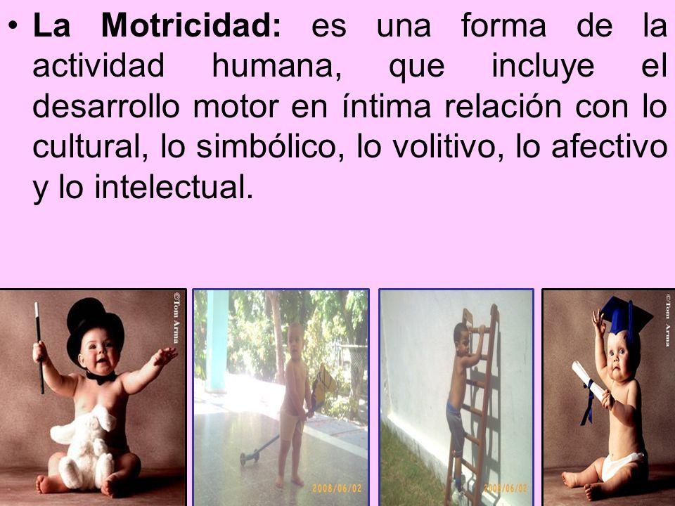 La Motricidad: es una forma de la actividad humana, que incluye el desarrollo motor en íntima relación con lo cultural, lo simbólico, lo volitivo, lo afectivo y lo intelectual.