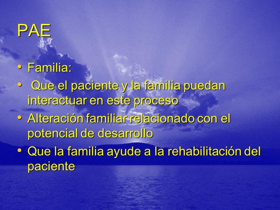 PAE Familia: Que el paciente y la familia puedan interactuar en este proceso. Alteración familiar relacionado con el potencial de desarrollo.