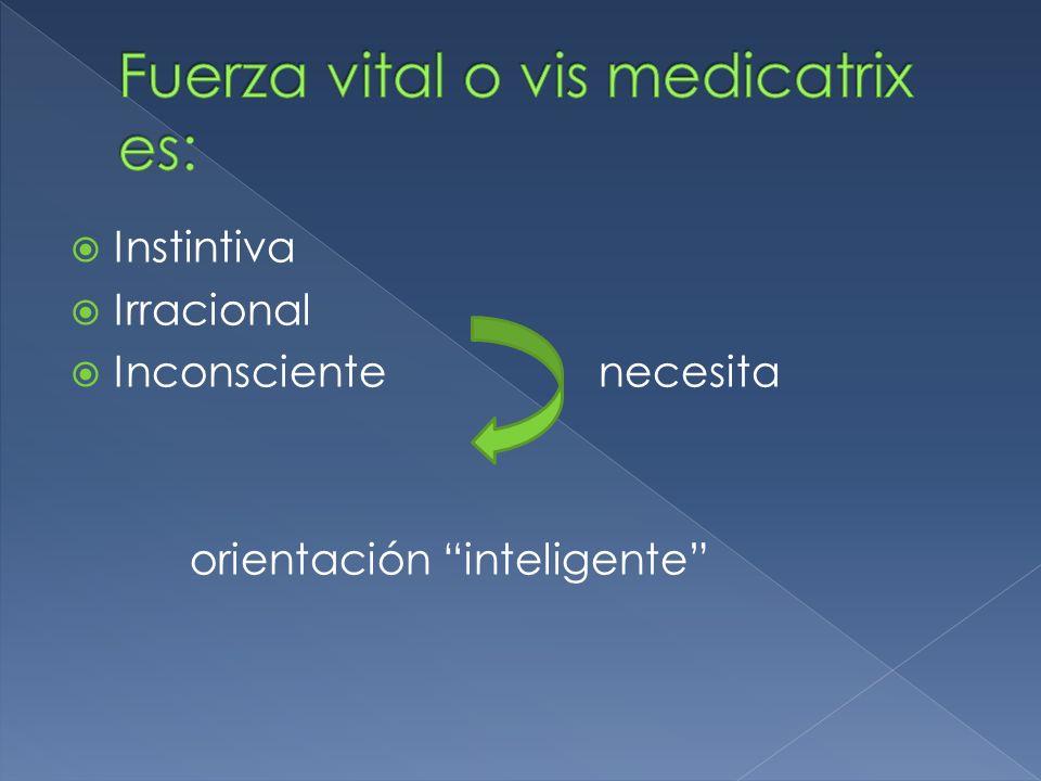 Fuerza vital o vis medicatrix es: