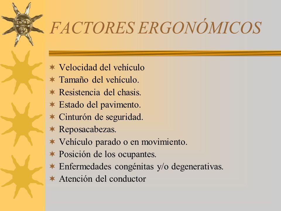 FACTORES ERGONÓMICOS Velocidad del vehículo Tamaño del vehículo.