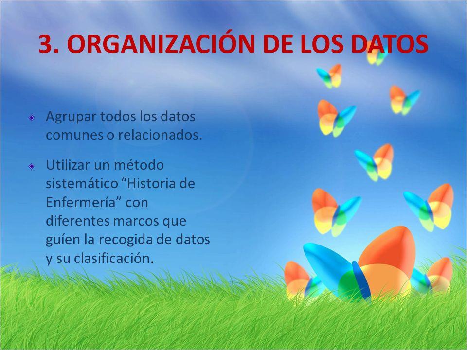 3. ORGANIZACIÓN DE LOS DATOS