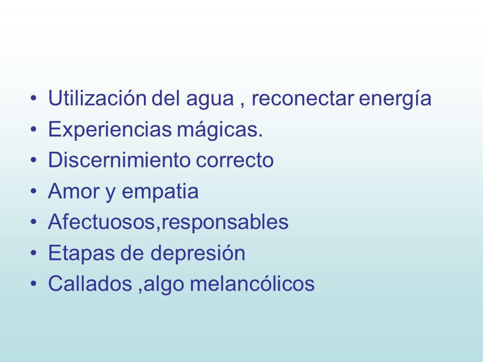 Utilización del agua , reconectar energía