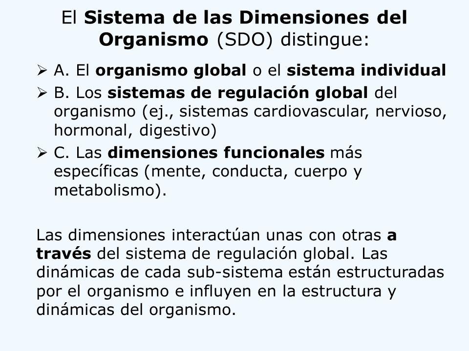 El Sistema de las Dimensiones del Organismo (SDO) distingue: