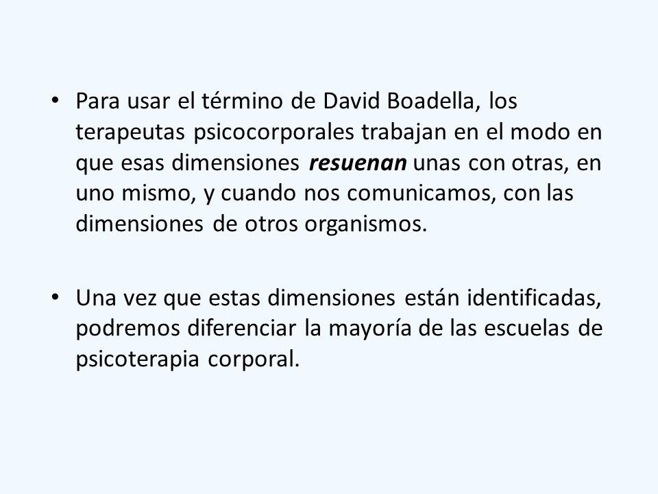 Para usar el término de David Boadella, los terapeutas psicocorporales trabajan en el modo en que esas dimensiones resuenan unas con otras, en uno mismo, y cuando nos comunicamos, con las dimensiones de otros organismos.