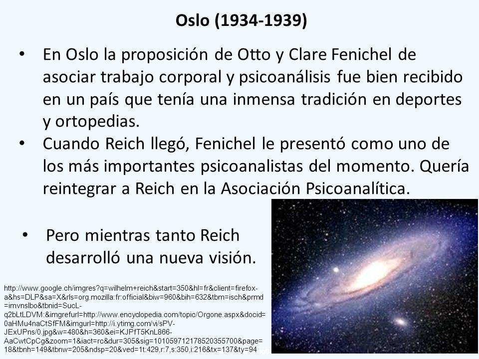 Pero mientras tanto Reich desarrolló una nueva visión.