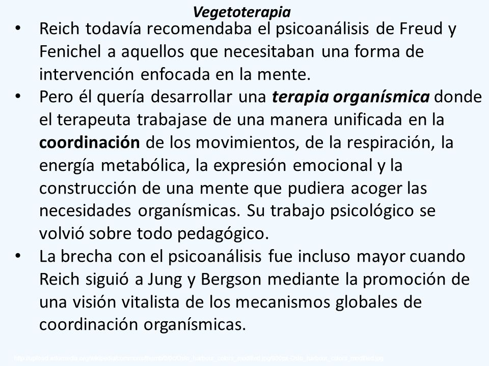 Vegetoterapia