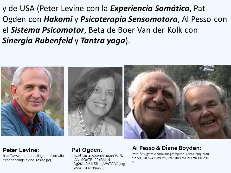 y de USA (Peter Levine con la Experiencia Somática, Pat Ogden con Hakomi y Psicoterapia Sensomotora, Al Pesso con el Sistema Psicomotor, Beta de Boer Van der Kolk con Sinergia Rubenfeld y Tantra yoga).