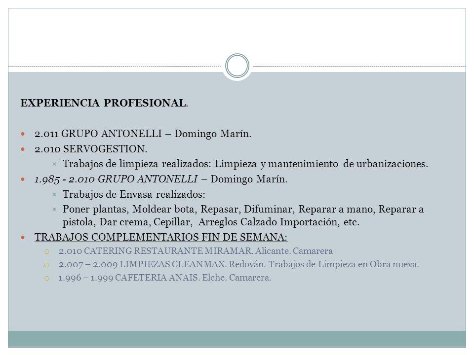 EXPERIENCIA PROFESIONAL. 2.011 GRUPO ANTONELLI – Domingo Marín.