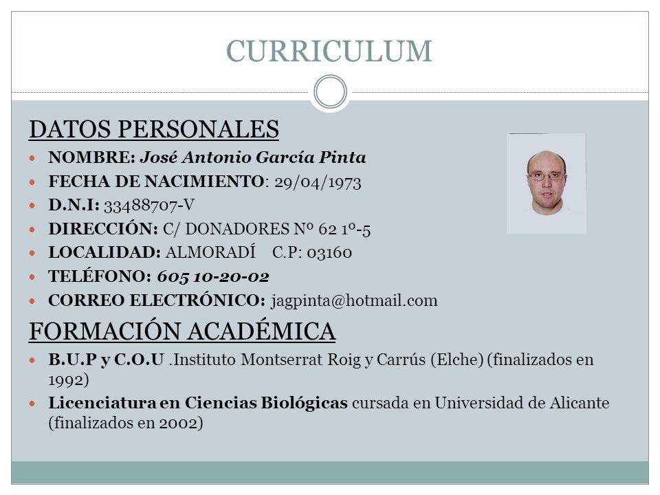 CURRICULUM DATOS PERSONALES FORMACIÓN ACADÉMICA