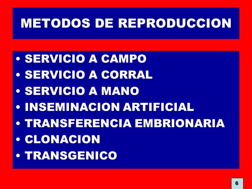 METODOS DE REPRODUCCION
