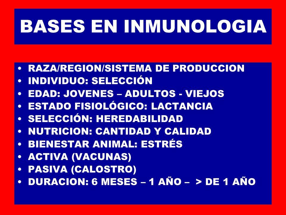 BASES EN INMUNOLOGIA RAZA/REGION/SISTEMA DE PRODUCCION