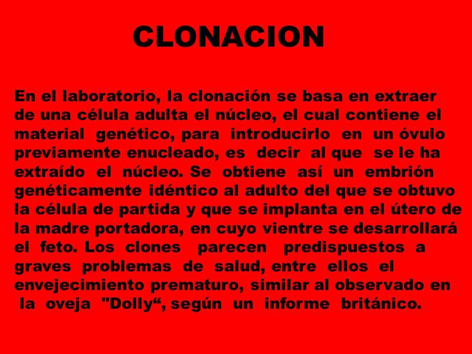 CLONACION En el laboratorio, la clonación se basa en extraer