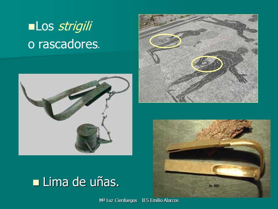 Mª Luz Cienfuegos IES Emilio Alarcos