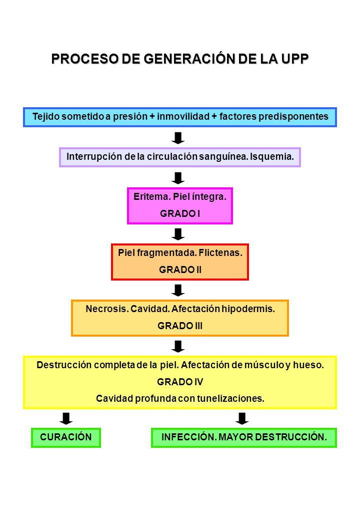 PROCESO DE GENERACIÓN DE LA UPP