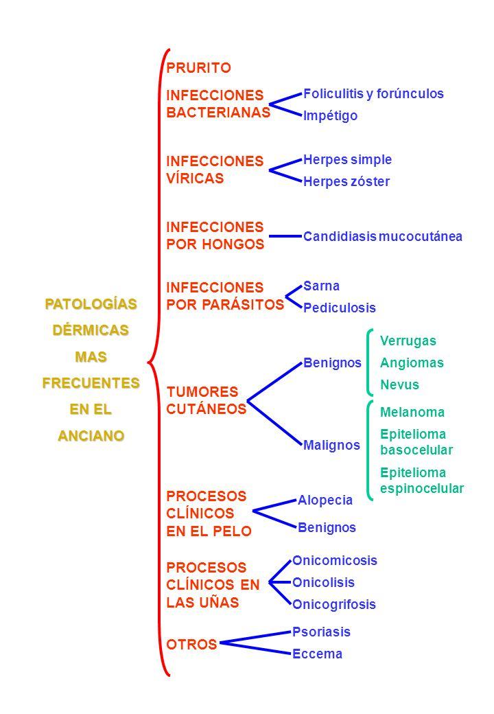 PATOLOGÍAS DÉRMICAS MAS FRECUENTES EN EL ANCIANO