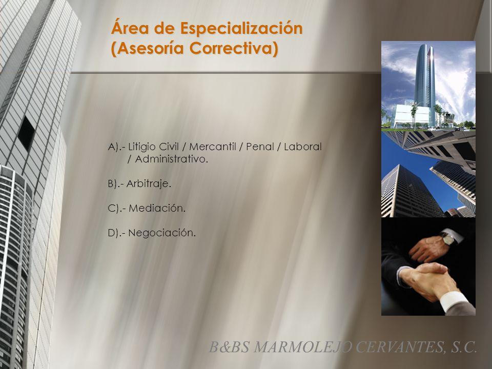 Área de Especialización (Asesoría Correctiva)