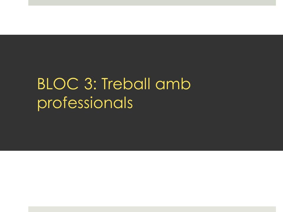 BLOC 3: Treball amb professionals