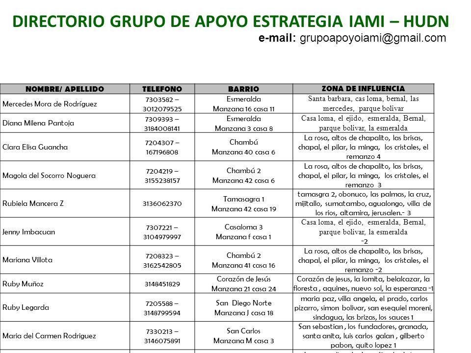 DIRECTORIO GRUPO DE APOYO ESTRATEGIA IAMI – HUDN