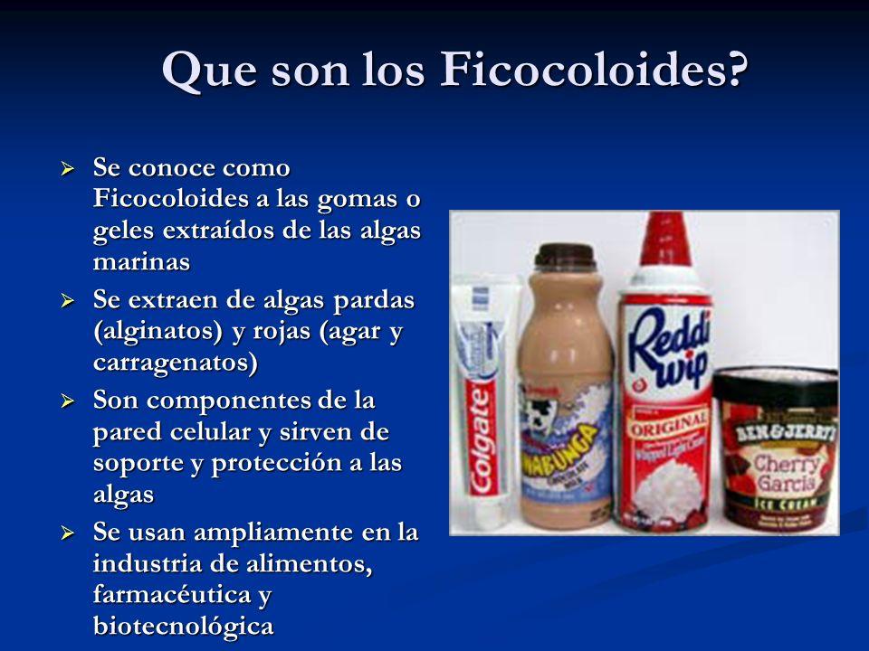 Que son los Ficocoloides
