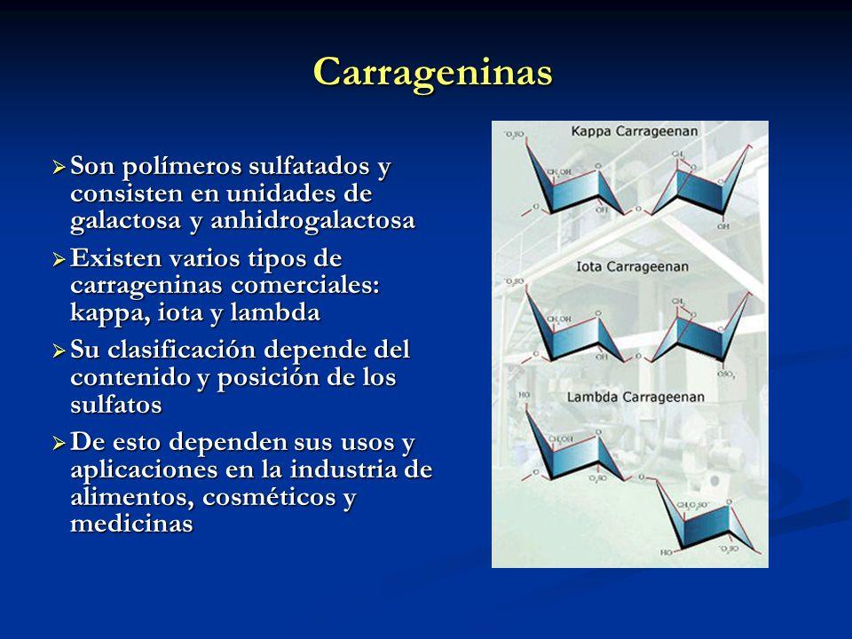 Carrageninas Son polímeros sulfatados y consisten en unidades de galactosa y anhidrogalactosa.