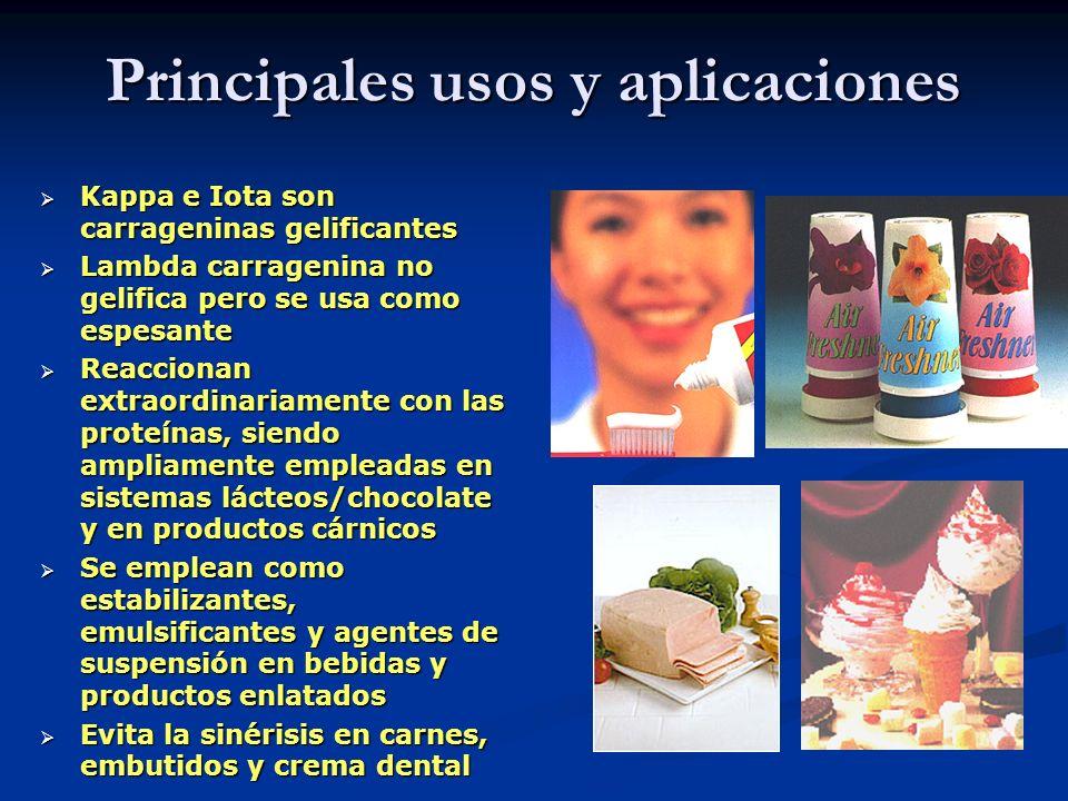 Principales usos y aplicaciones