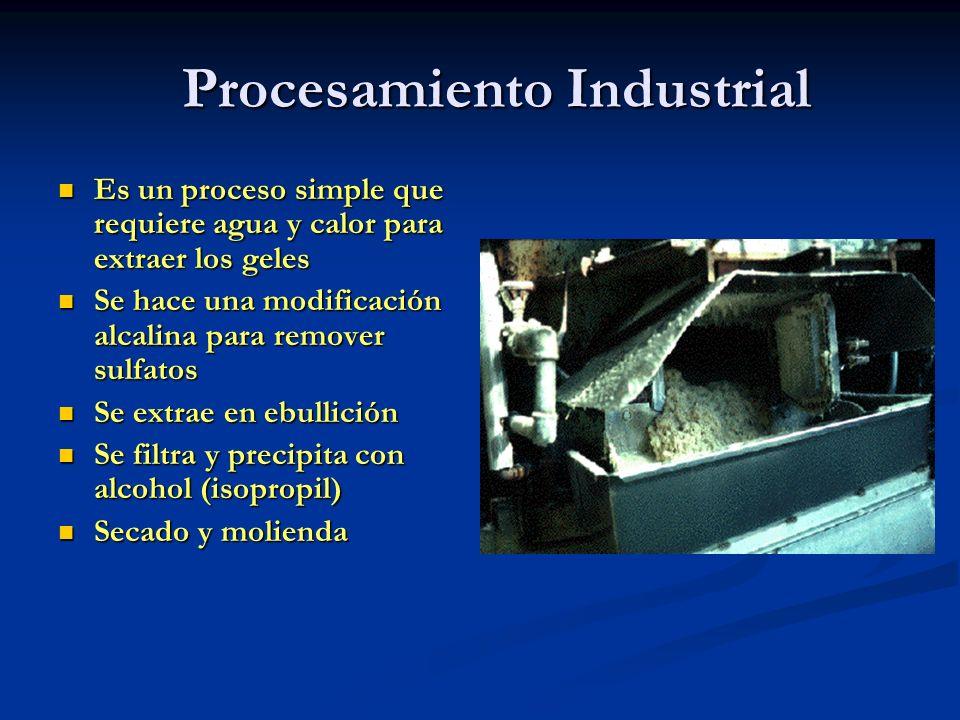 Procesamiento Industrial