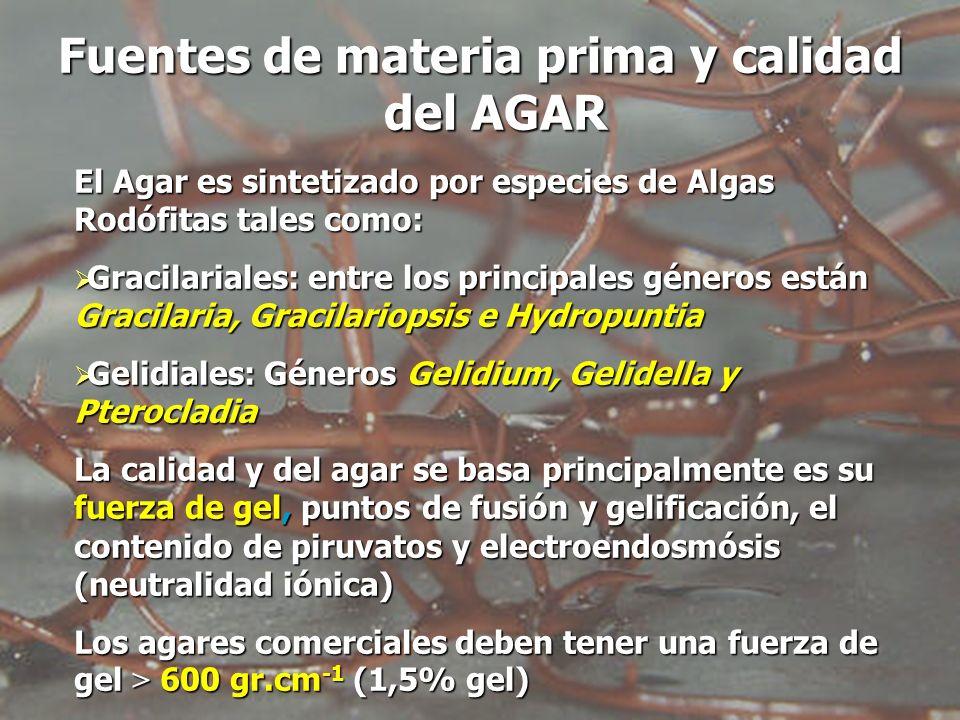 Fuentes de materia prima y calidad del AGAR