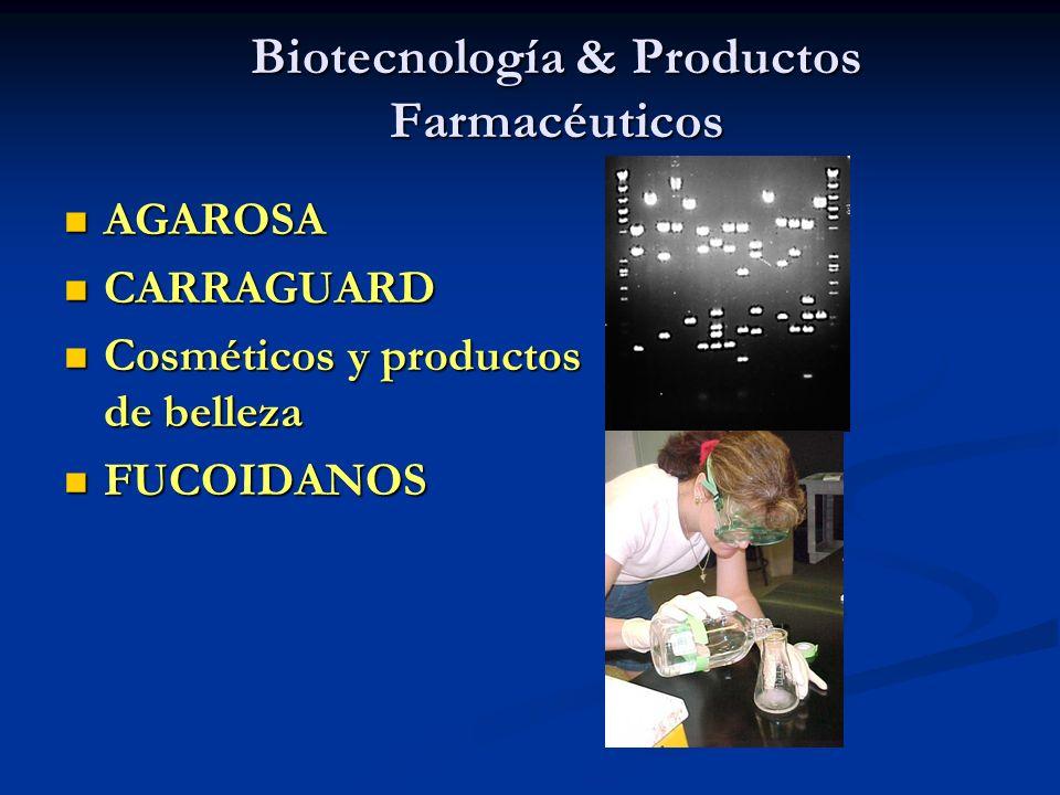 Biotecnología & Productos Farmacéuticos
